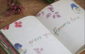 Libro fiori_erbario